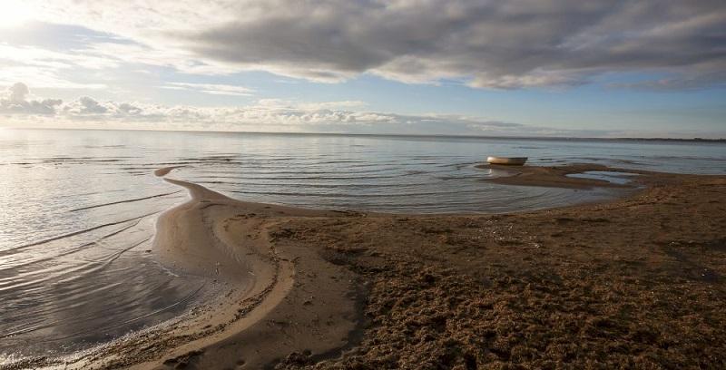 Рыбалка в Псковской области - Чудское озеро