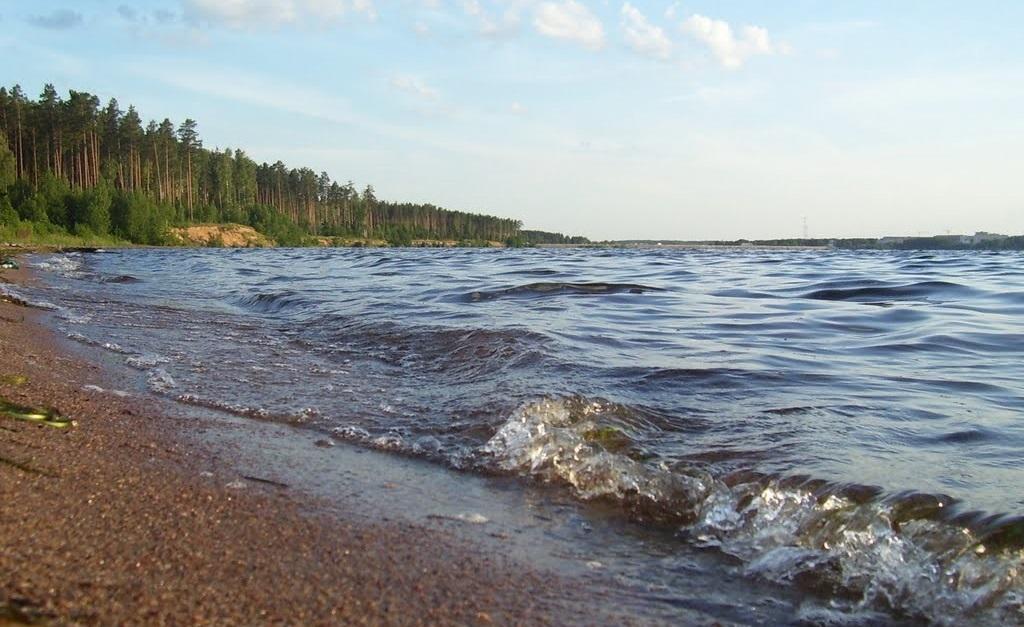 Рыбалка в Смоленске и области - Десногорское водохранилище