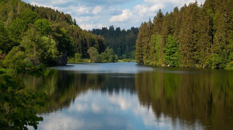 Рыбалка в Тамбовской области - Кершинское водохранилище