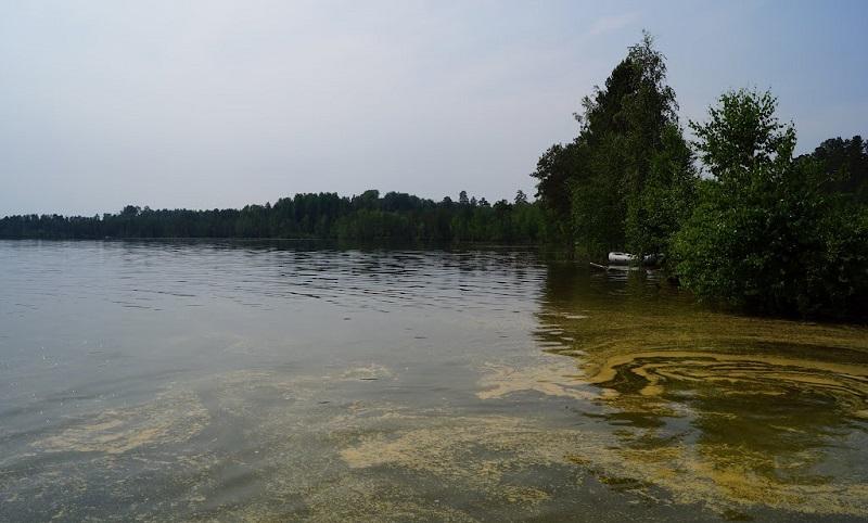 Озеро Чертаны, Томская область
