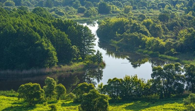 Река Ворона, Пензенская область